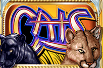 Играйте на Vulkan Platinum в автомат Кошки